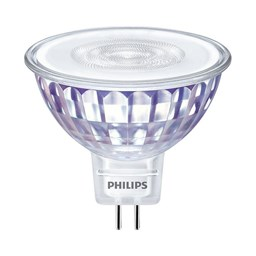 Bild von Philips Master LED-Spot Value 5.5W (35 Watt) GU5.3